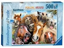 SELFIES HORSING AROUND 500 PCE