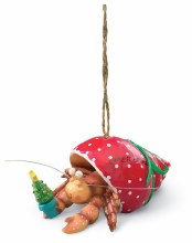 Hermit Crab Holding Christmas Tree