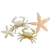 Crab & Shell Metal Wall Decor