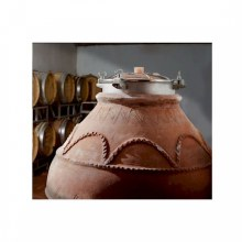 800 Liter Amphora Terracotta Fermenters