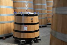 The Experience® 1000L Oak Vat