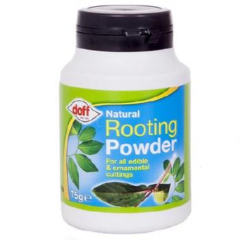 DOFF NATURAL ROOTING POWDER 75 GRM