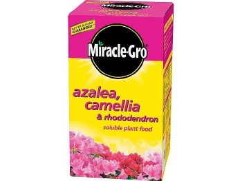 MIRACLE GRO AZALEA CAMELLIA AND RHODODENDRON PLANT FOOD 500G