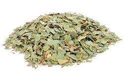 Eucalyptus Leaf C/S, Organic