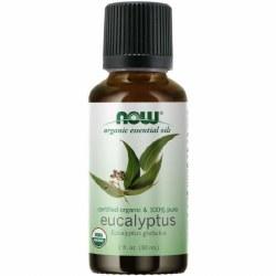Eucalyptus Globulus Oil, Organic