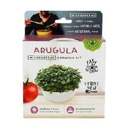 Arugula Microgreens Kit