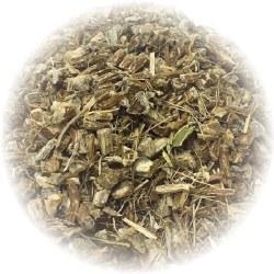 Echinacea Angustifolia, Organic