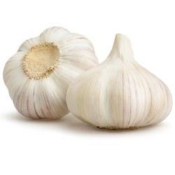 Garlic, Organic