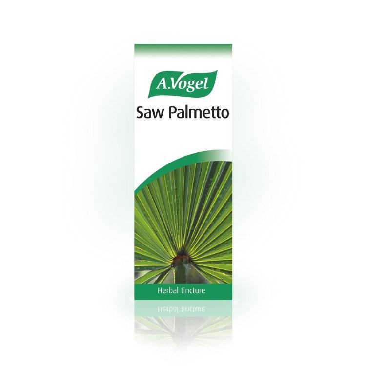A Vogel Saw Palmetto