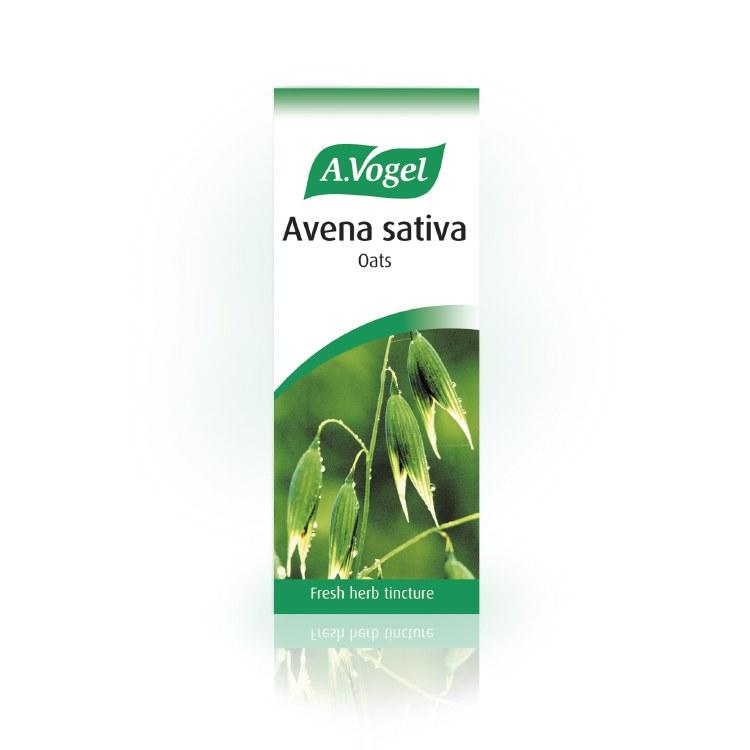 Avena Sativa (Oats)