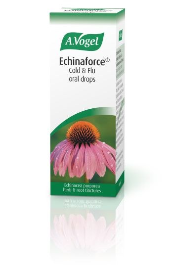 Echinaforce (Purple Cone Flowe