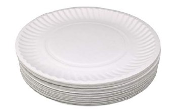 Paper Plates 100ct