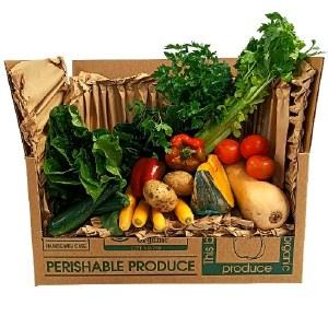Farmer's Pick Veggie Large Box