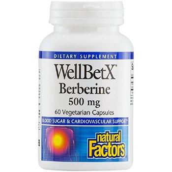 Natural Factors 500mg Berberine, 60 vegetarian capsules