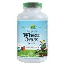 Amazing Grass Organic Wheat Grass 100 servings