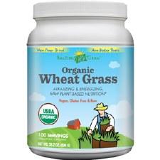 Amazing Grass Organic Wheat Grass Powder, 28.2 oz.
