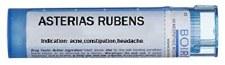 Boiron Asterias Rubens 30C, 80 pellets