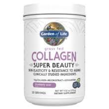 Garden of Life Blueberry Acai Collagen Super Beauty, 9.52 oz.
