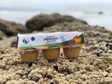 Green Coast Pet Pumpkin Applesauce for Dogs, 6 pack