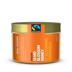 Equal Exchange F/T RAW Ulmo Blossom Honey 500g