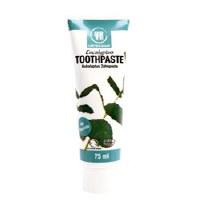 Urtekram Eucalyptus Toothpaste Organic 75ml