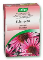 Bioforce Uk Ltd A Vogel Echinacea Lozenges 30g