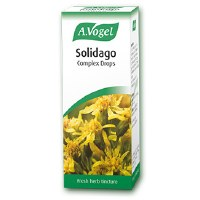 Bioforce Uk Ltd A Vogel Solidago 50ml 50ml