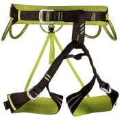 Alpine Flash Harness