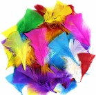 Feathers (4cm) - Assorted Bright Colours