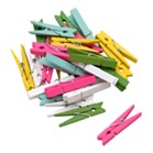 Mini Pegs Pack of 25 - Multicoloured
