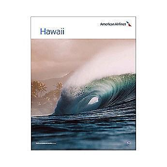 AA Hawaii Poster