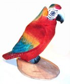Peepers Parrot 5750