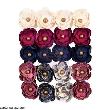 Flowers Prima Darcelle Behind