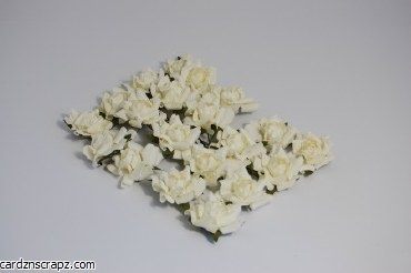 Paper Rose Heads x20 Cream
