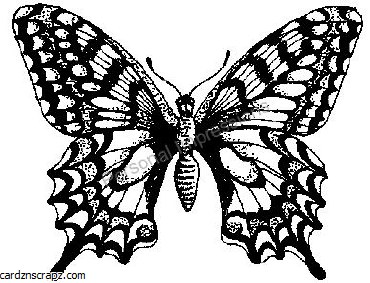 R/Stamp Butterfly #2