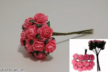 Mini Open Rose 12 Pack Pink