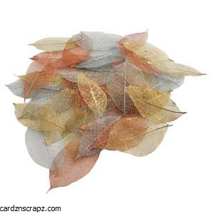 Skeleton Leaf 40pk Metallic