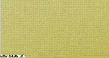 Bazzill 12x12 Limeade Green