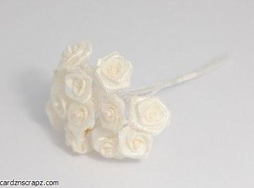 Mini Open Rose 12pk Iridescent Cream