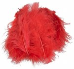 Feathers Marabou Red 15pk