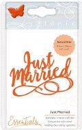 Dies Tonic Just Married Script