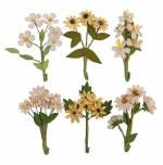 Flowers Prima Desert Hill