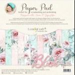 Paper Pk 6x6 LC Blush