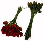 Mini Rose Bud Red 24 Pack