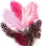 Feathers Guinea Fowl Pink Mix 18pk