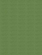 Mi Teintes A4 475 Green