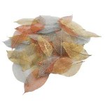 Skeleton Leaf 40pk Metallic