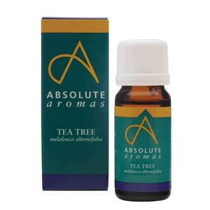 Absolute Aromas Tea Tree Oil 10ml