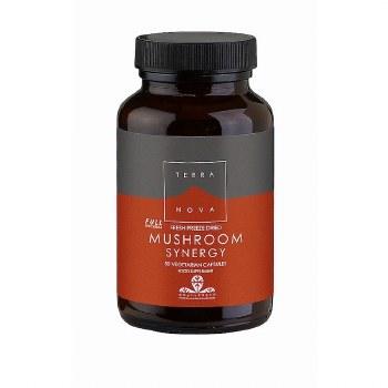 TerraNova Nutrition Mushroom Synergy  50 Capsules