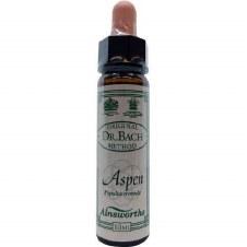 Ainsworths Aspen   10 ml